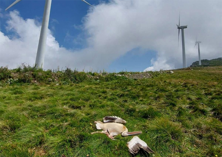 Όχι από το Περιφερειακό Συμβουλίο Πελοποννήσου για τις ΜΕΠΕ τριών αιολικών πάρκων στον Πάρνωνα