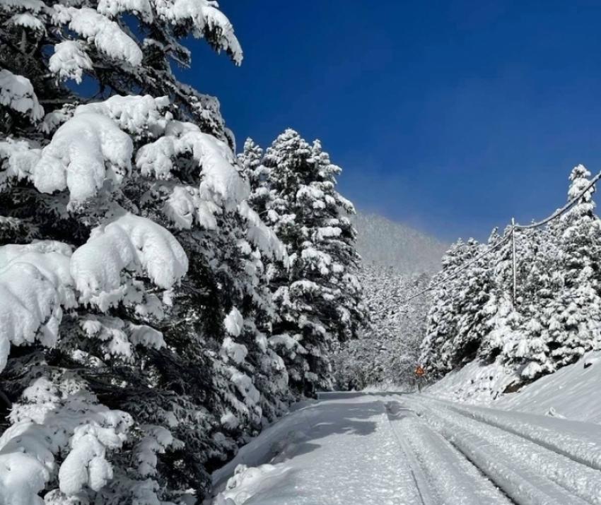 Μαγευτικές εικόνες στο Χιονοδρομικό Κέντρο Μαινάλου