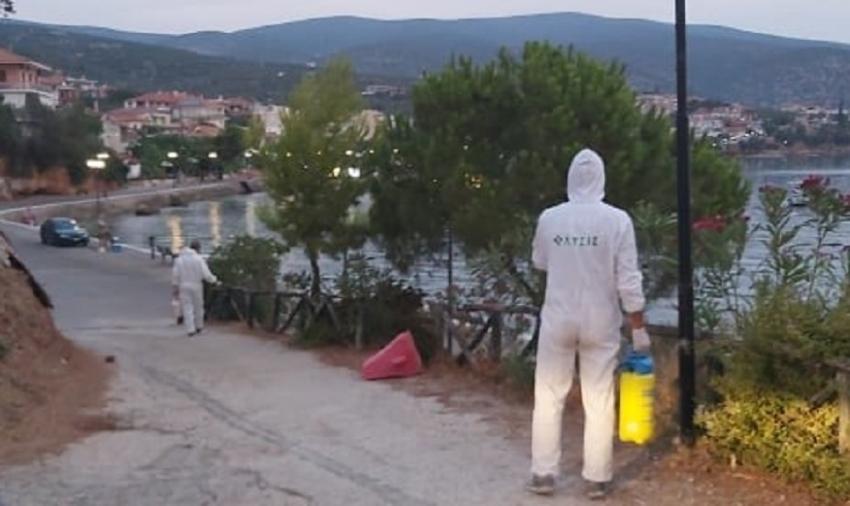 Ολοκληρώθηκε η εφαρμογή του προγράμματος διαχείρισης κουνουπιών στον Δήμο Β. Κυνουρίας