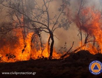 Κατάσταση Συναγερμού στον Δήμο Τρίπολης - Ακραίος κίνδυνος πυρκαγιάς αύριο Παρασκευή 05/08